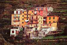Houses built up on the face of the hills in Manarola