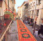Sawdusts carpets in Camaiore